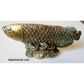 Риба върху монети